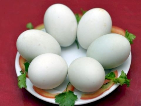 "Choose delicious duck eggs in the way ""MR. ANH"" teaches"