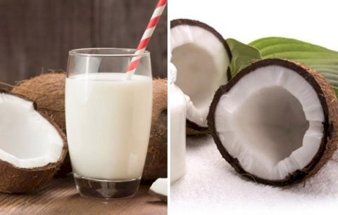 "The ""Extraordinary"" of coconut milk gives us"